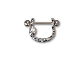 Steel and Silver Jewelled Snake Nipple Stirrups