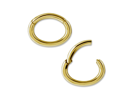 PVD Gold Steel Rook Oval Hinged Segment Ring